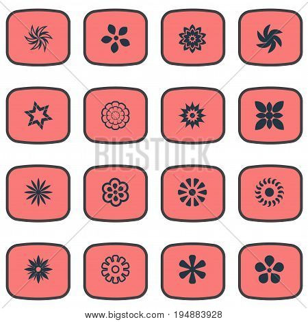 Vector Illustration Set Of Simple Blossom Icons. Elements Gerberas, Aloha, Delphinium And Other Synonyms Delphinium, Aster And Petal.
