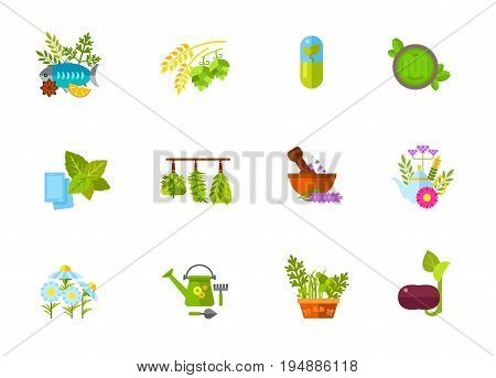 Herbs icon set. Fish with herbs Hops and malt Herbal supplement Mint gum Dried spice Mortar Herbal tea Chamomile Herbal garden. Contains bonus icons of Pesto sauce Garden tools Bean