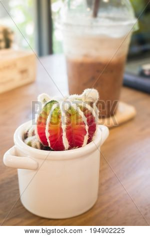 Small cactus pot on wooden table stock photo