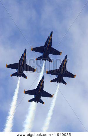Hornets In Flight