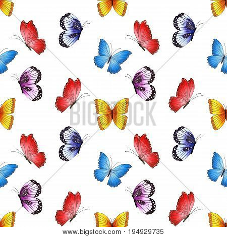 Seamless Pattern With Colorful Butterflies Isolated On White Background.
