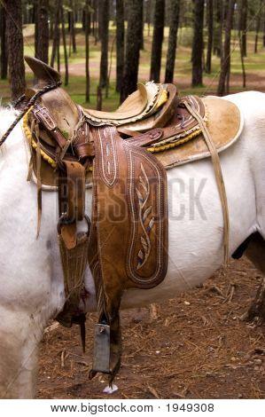 Horse Saddle On A White Horse