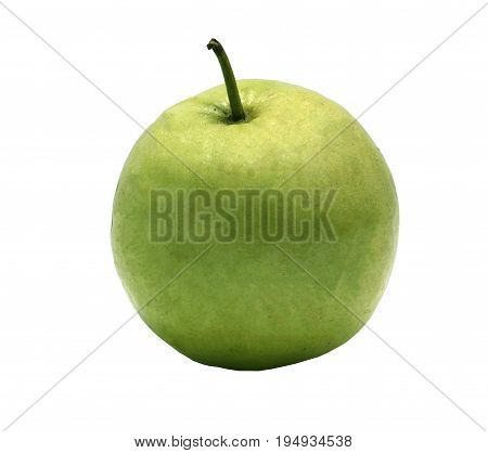 A green guava isolated. it is on white background
