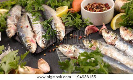 raw sardine with ingredients