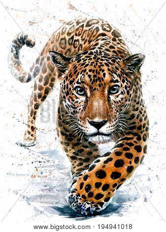 Leopard, watercolor, animals, predator, big cat, painting, wildlife