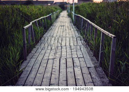 Old wooden bridge over a small shallow river flows into estuary of the Black Sea. Wood bridge leads into the reeds vanishing point perspective. Bridge to the swamp in the Meadowlands. Marsh boardwalk.