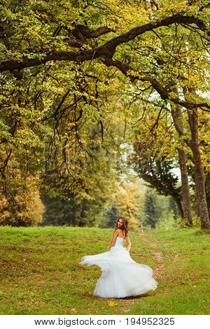 Large Green Branches Hang Over The Bride Whirling On The Hill