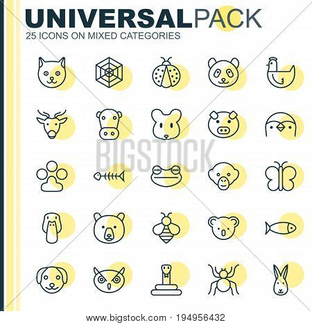 Zoo Icons Set. Collection Of Hen, Bumblebee, Ladybird And Other Elements. Also Includes Symbols Such As Night, Rat, Hen.