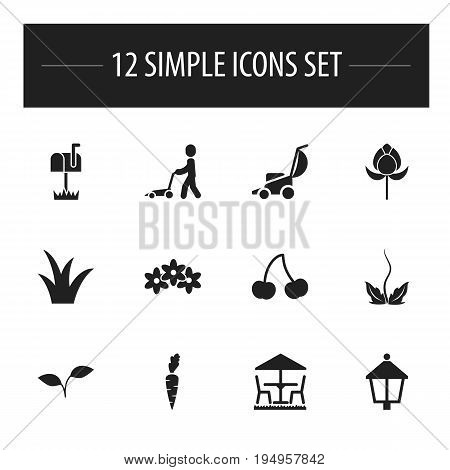 Set Of 12 Editable Gardening Icons. Includes Symbols Such As Grass Cutting Machine, Root Vegetable, Mailbox And More. Can Be Used For Web, Mobile, UI And Infographic Design.