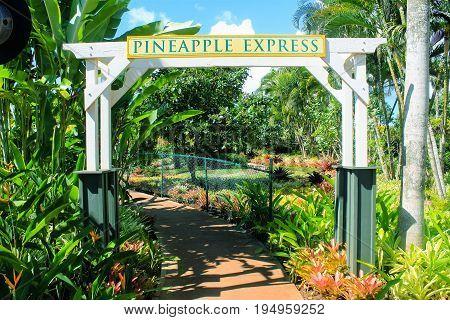 Honolulu Hawaii USA - May 29 2016: Path leading to the Pineapple Express
