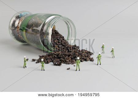 Mini Swat Team With Thrown Of Tea