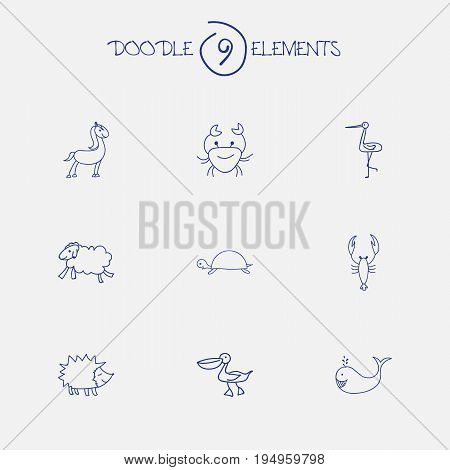 Set Of 9 Editable Zoology Icons. Includes Symbols Such As Shadoof, Urchin, Pelican And More. Can Be Used For Web, Mobile, UI And Infographic Design.