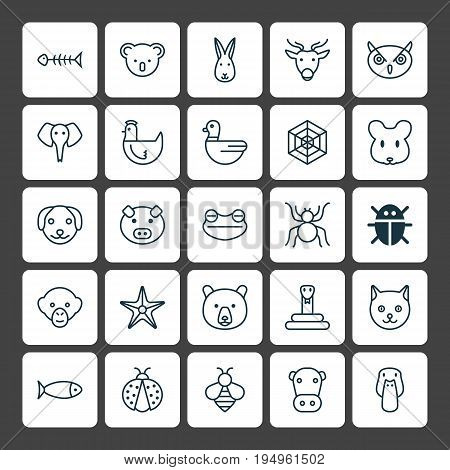 Animal Icons Set. Collection Of Ladybird, Trunked Animal, Grizzly And Other Elements. Also Includes Symbols Such As Amphibian, Animal, Marsupial.