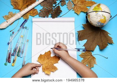 Open notebook flute globe autumn leaves and hands of Caucasian primary school age girl. Empty space for text. Education and school concept.
