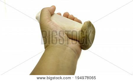 Eryngii Mushroom is grasped and held by middle-age lady hand (Asian skin), looks like dumbbell lifting poster. Concept of mushroom is a healthy food. Isolated on white background.