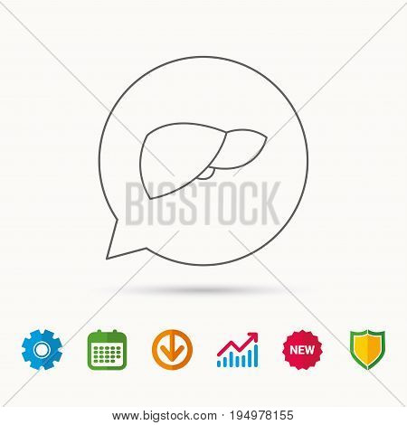 Liver icon. Transplantation organ sign. Medical hepathology symbol. Calendar, Graph chart and Cogwheel signs. Download and Shield web icons. Vector