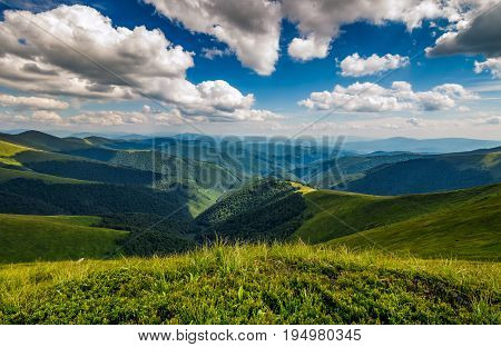 Hillside Meadow In Mountain
