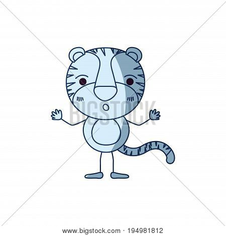 blue color shading silhouette caricature of cute tiger astonished expression vector illustration
