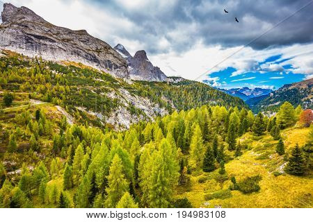 The shores of the glacial lake in the Dolomites. Autumn day. On the mountain slopes there is a coniferous forest
