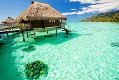 Over water bungalow with steps into amazing green lagoon poster