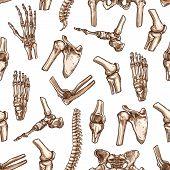 Human skeleton bone seamless pattern background. Medical pattern with bone and joint of hand, knee, hip, foot, spine, elbow, pelvis, shoulder, wrist, arm, finger sketches for anatomy, medicine design poster