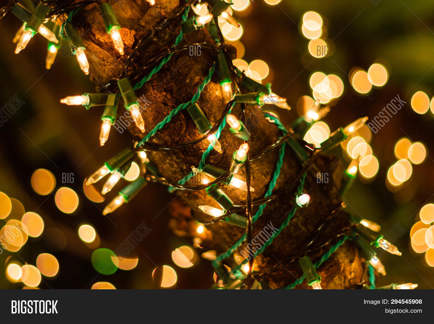 Decorative Outdoor Image Photo Free Trial Stock