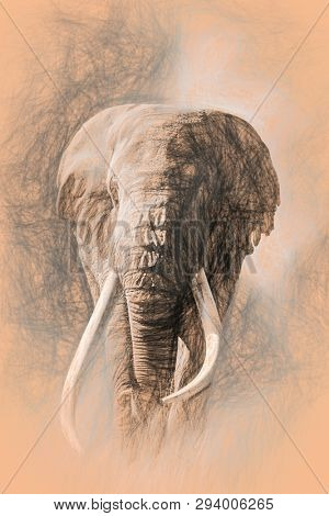 Giant tusked bull elephant, Tusker Tim,  in Amboseli, Kenya, in a cloud of dust. Pencil sketch on peach coloured, warm toned paper.
