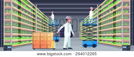 Agriculture Engineers Working In Modern Organic Vertical Farm Interior Farming System Concept Pallet