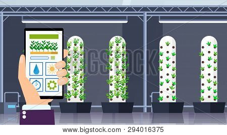 Hand Using Mobile App Smart Control Farming System Agriculture Concept Smartphone Screen Modern Orga
