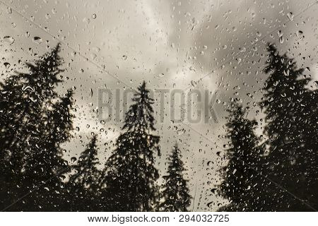 Scenery With Fir Trees In The Forest, Viewed Through A Glass Window Covered With Rain Drops