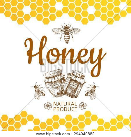 Vintage Honey Logo And Background With Vector Bee, Honey Jars And Honeycombs. Natural Honey Food, Ho