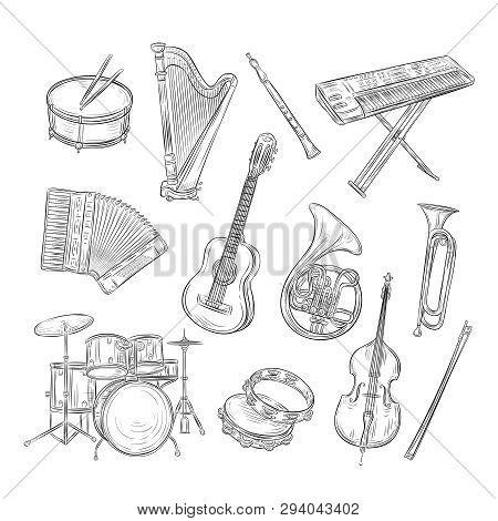 Sketch Musical Instruments. Drum Harp Flute Synthesizer Accordion Guitar Trumpet Cello. Music Vintag