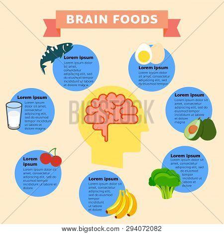A Vector Illustration Of Brain Foods Infographic. Brain Food Vector Flat Infographic. Vector Flat Ca