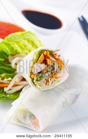 spring rolls with vegetables and chicken poster