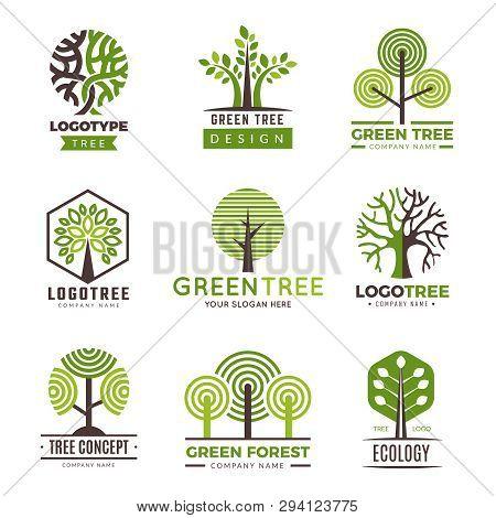 Tree Logotypes. Eco Green Symbols Wood Stylized Trees Plants Vector Logo. Illustration Of Eco Wood T