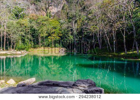Swamp In Tham Luang - Khun Nam Nang Non Forest Park, Chiang Rai, Nort Of Thailand