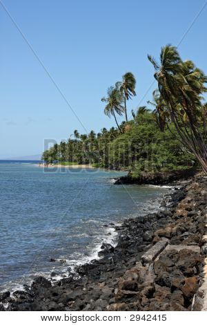 Maui Coastline