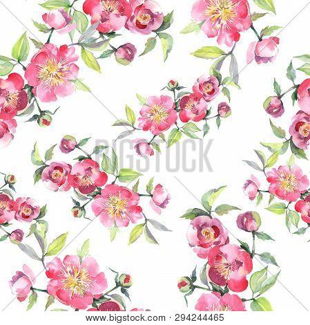 Pink Peony Bouquet Floral Botanical Flowers. Watercolor Background Illustration Set. Seamless Backgr