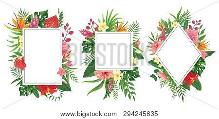 Tropical Flower Frames. Botanical Tropics Borders, Tropic Flowers Invitation Frame And Summer Plants