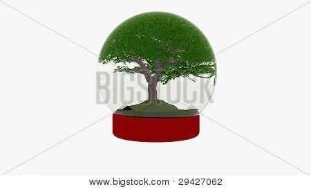 snow globe with cherry tree, ecology concept