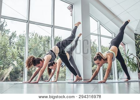 Group Of Young Sporty People Practicing Yoga Lesson With Instructor, Stretching In Downward Facing D