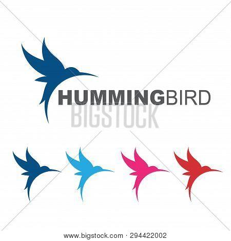 Elegant Flying Hummingbird Colibri Nature Logo Symbol