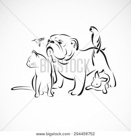 Vector Group Of Pets - Dog, Cat, Bird, Macaw, Rabbit Isolated On White Background., Pet Logo Or Icon