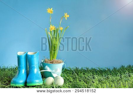 Natural Easter Eggs, Rubber Rain Boots And Yellow Daffodil Flowers In Grass Against A Blue Backgroun
