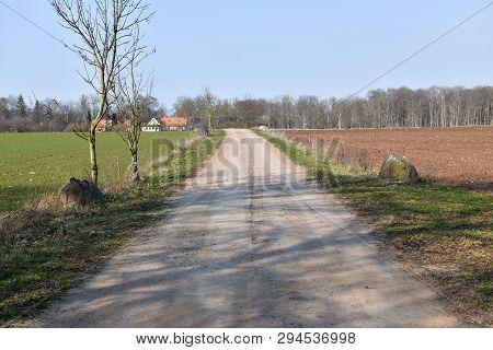 Dirt Road Through A Rural Swedish Landscape By Spring Season