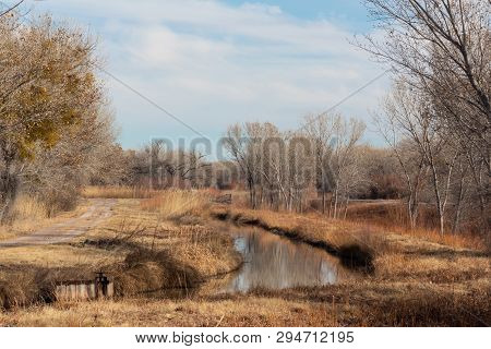 Bosque Del Apache New Mexico, Winter Landscape With Road And Irrigation Ditch, Bare Trees, Horizonta