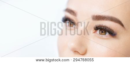 Close Up View Of Beautiful Brown Female Eye With Long Eyelashes, Smooth Healthy Skin. Eyelash Extens