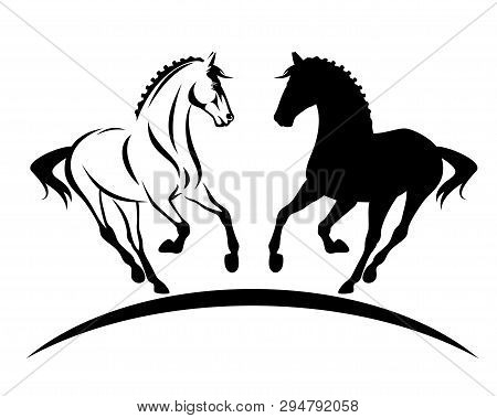 Beautiful Thoroughbred Horse With Braided Mane Black And White Vector Silhouette And Outline