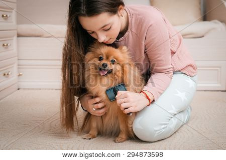 Teenage Girl With A Dog Breed Spitz Rejoices With A Pet At Home On The Floor. Care And Training Of A