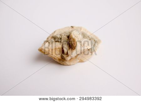 Calcite Is A Carbonate Mineral And The Most Stable Polymorph Of Calcium Carbonate